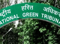 NGT awards up to ₹20 lakh compensation to victims of Tamil Nadu fireworks accident