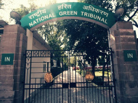 It seems state authorities consider themselves above law: NGT to UP govt